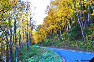 Topmost Fall Foliage spots in and around Gatlinburg, Tennessee.