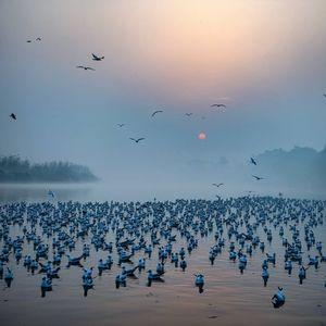 Yamuna River, Delhi