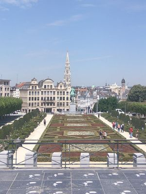 Buzzing Brussels