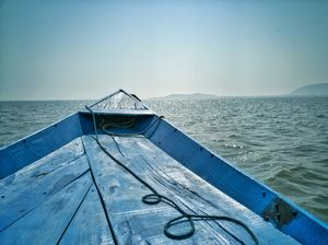 The Poignancy of Chilika