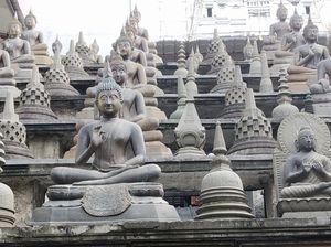 Sri Lanka- Wonder of Asia