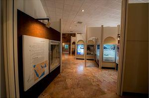 Al-Ula museum 1/1 by Tripoto