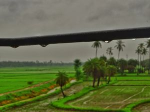 Across the rural Andhra Pradesh