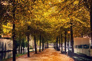The Fairy Land- Bruges, Belgium