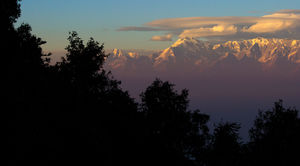 Binsar - Well-known Yet Unexplored Side of Himalaya