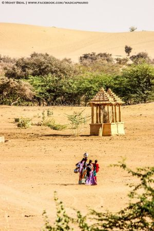 Registhan Guest House - An Oasis In The Thar