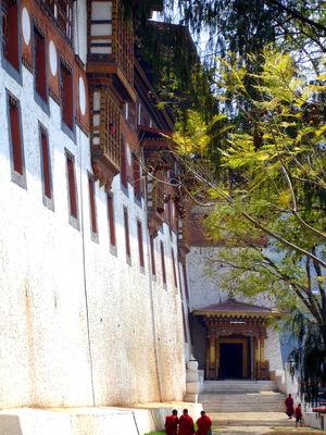 Punakha Dzong 1/54 by Tripoto