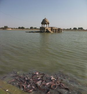 Gadisar Lake 1/undefined by Tripoto
