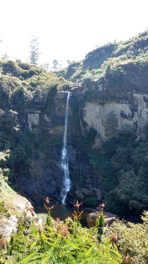 Ramboda Falls 1/undefined by Tripoto