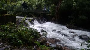 A trip to Coorg