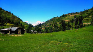 This unexplored hamlet in Himachal Pradesh is the perfect place to escape the crowds!