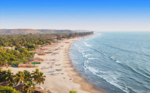 You Can Now Get a Free Beer In Goa in Exchange Of Trash Collected From The Beach!