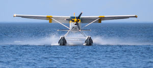 Island Hopping on a Seaplane Will Soon Be a Reality in Andamans
