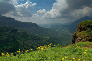 Entry for Tourists Banned in Malshej Ghat This Monsoon