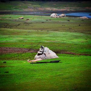 Urban nomad presents-Explore the unexplored South India!!