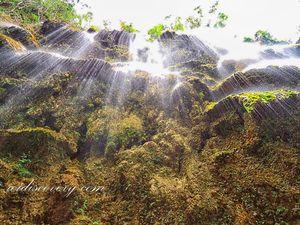 Tumalog Falls 1/3 by Tripoto