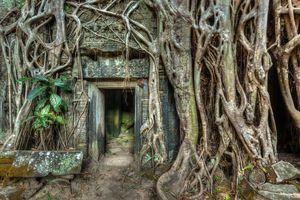 Angkor Wat 1/3 by Tripoto