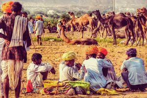 Rajasthan Ri shan #rajasthaninphotos
