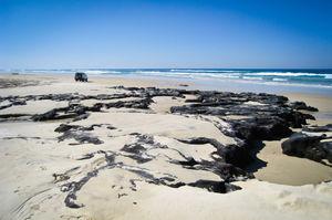 Fraser Island 1/1 by Tripoto