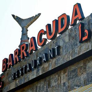Barracuda Restaurant - Jumeirah Road - Jumeirah - Dubai - United Arab Emirates 1/1 by Tripoto