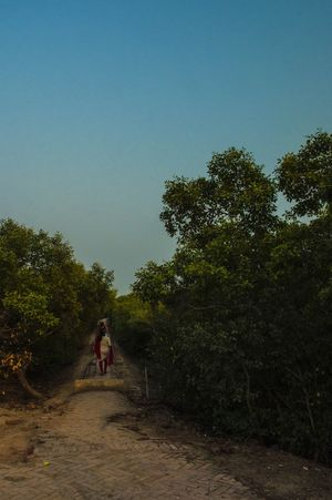 Henry Island Near Kolkata Is Its Very Own Private Beach
