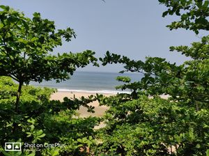 The beach with a cliff :Varkala