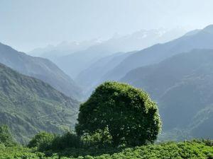 Raithal- A Sustainable Village of Uttarakhand
