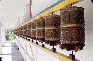 Dharamshala & Beyond: A Peek into Tibetan Culture