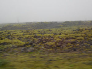 Moving Along Iceland's Ring Road