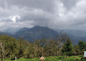 Kodaikanal/Vattakanal - The land of mist,mountains and greenery !