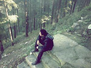 Narkanda - 40km from Shimla