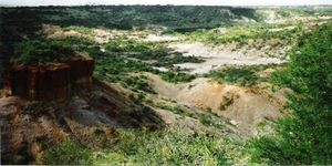 Olduvai Gorge 1/undefined by Tripoto