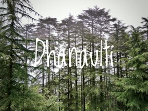 The Solo Experience - Dhanaulti