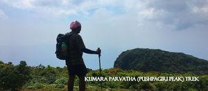 Kumara Parvatha (Pushpagiri Peak) Trek