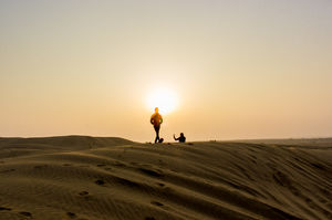 Flat and barren lands blasted and blazed by the sun #rajasthaninphotos
