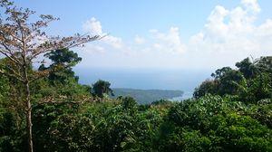 Mount Harriet RV 1/undefined by Tripoto