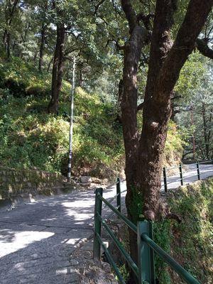 Lal Tibba Hiking