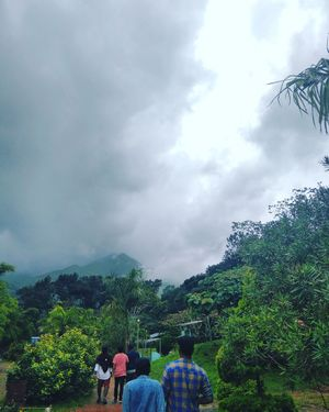 The cool climate with scenes of greeneary , clouds and fog, and it has a beautiful view at end point