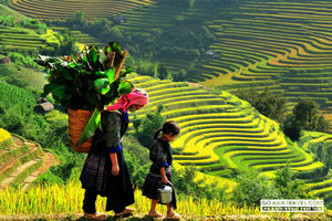 TRULY VIETNAM TOUR 16 DAYS 15 NIGHTS