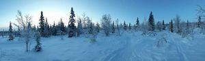 Cap sur le grand nord : Voyage de Noce en Laponie Finlandaise - Goyav