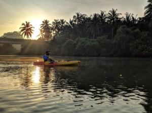 Kayaking Trip at Mulki