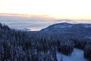 Mount Washington Alpine Resort 1/undefined by Tripoto