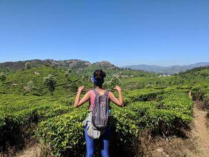 The Blue Mountains....Nilgiris!( Coonoor, Ooty and Kotagiri)