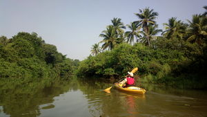 5 Offbeat Things to do in Goa