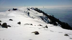 Triund Winter Trek