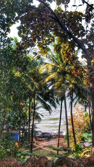 Gokarna : Beach More, Worry Less