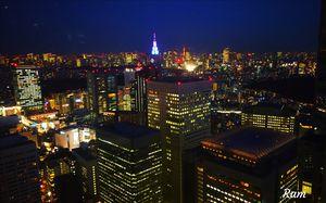 Tokyo Metropolis view from Tokyo Metropolitan Government Building