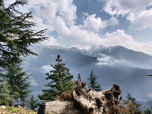 One (offbeat) week in Himachal
