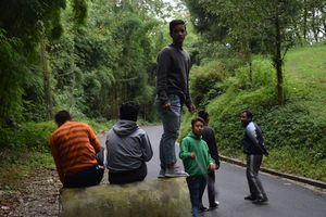 2 day trek in Pangathang reserve forest, sikkim #colourgreen