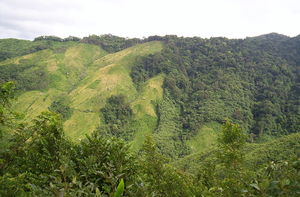 Nokrek National Park- Biosphere Reserve in Meghalaya